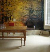 SAINT JEAN D'ANGELY – 55m² – 340€/mois